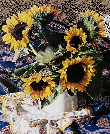 Barbara Edidin - Honeymoon in Arles