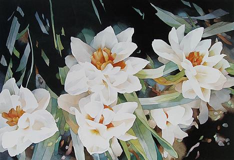 Jean Crane - Narcissus