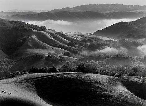 John Wimberley - Pastoral Dawn