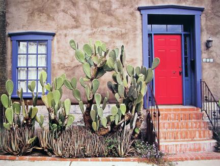 Louis Cantillo - Red Door, The