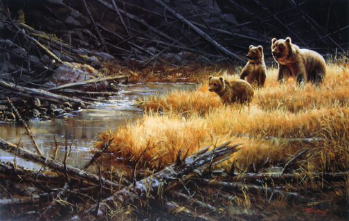 Paco Young - Yellowstone Grizzlies