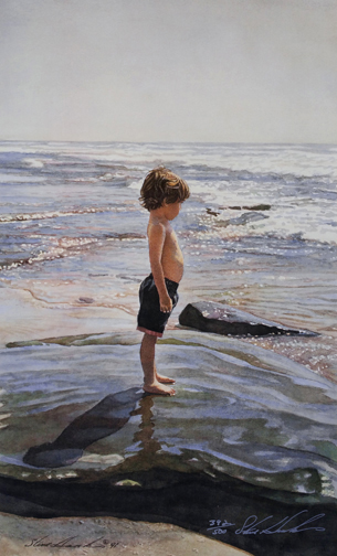 Steve Hanks  - Sea Urchin