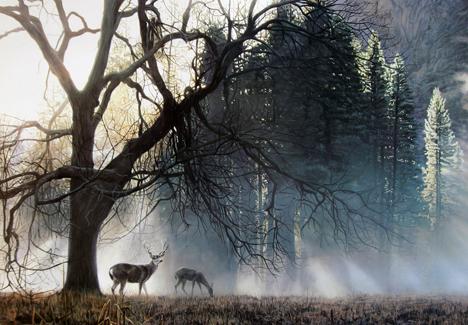 Terry Isaac - Yosemite Dawn